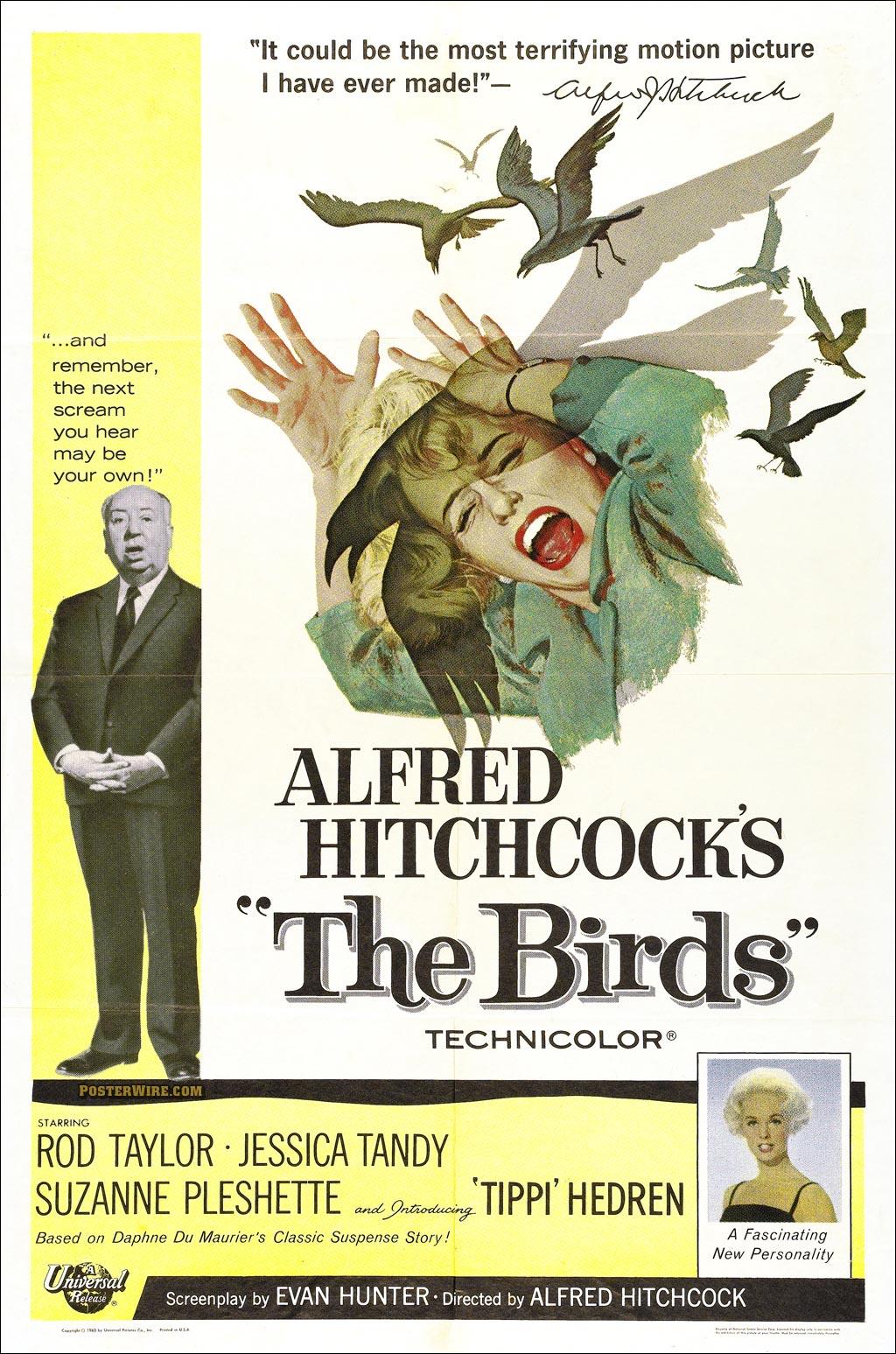 "Hitchcock Conversations: ""The Birds"" (1963)"